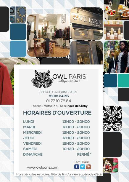 owl-flyer