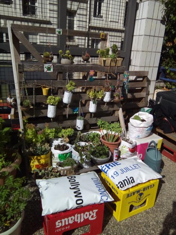 coussins-au-jardin3